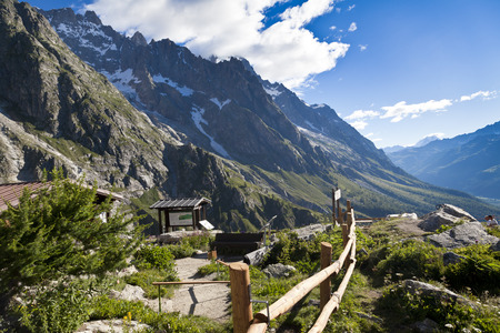 BOTANICAL GARDEN Saussurea, hiking in the Mona Blanc area