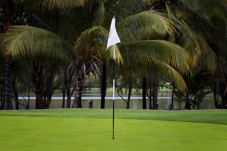 dimple: Hole golf field with white flag