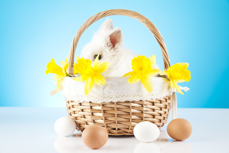 White Easter Bunny sitting in a wicker basket with colored eggs around