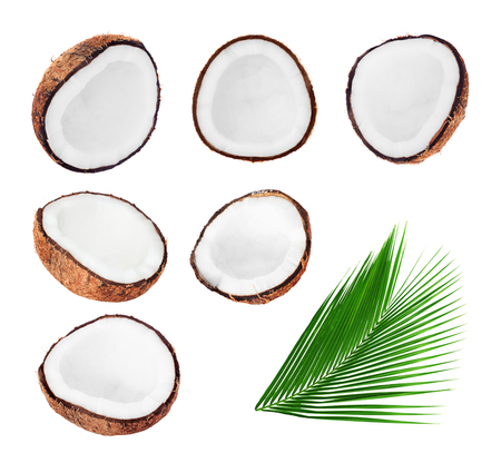 coconut palm: Collection of fresh open coconuts and palm leaf isolated on white background Stock Photo