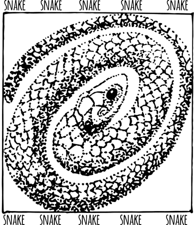 snake hand drawn illustration