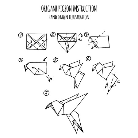 hand drawn illustration step by step of pigeon origami