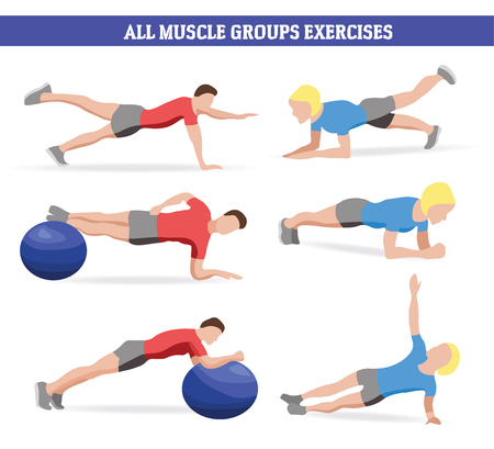 Vector Illustration of all muscle groups exercises with fitness ball and plank