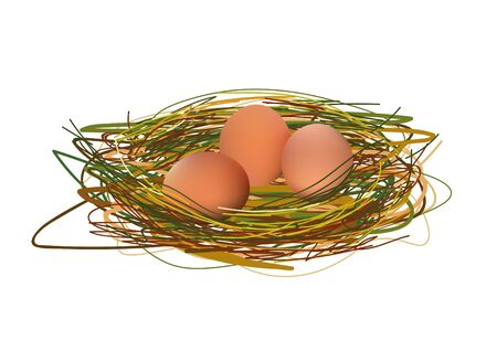 roost: Realistic Eggs In Nest. Vector Illustration Isolated On White Background Icon Illustration
