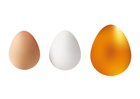 golden eggs: White, Brown and Golden Eggs illustration. Vector Isolated Icon Set