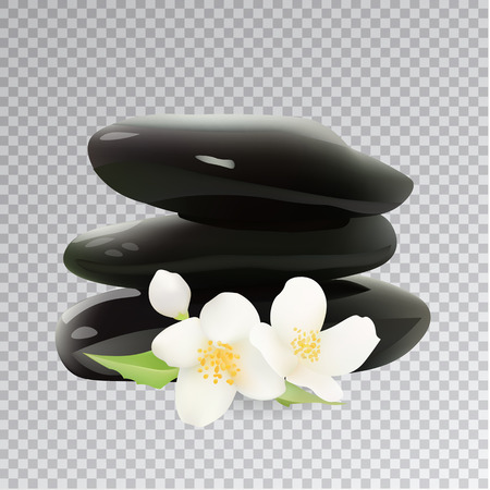 oriental flower: Spa Stones with Jasmine Flower. Isolated Vector Illustration. Template Elements for Cosmetic Shop, Spa Salon, Beauty Products Package, Medical Care Treatment.