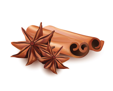 anice: Vector Realistic Isolated Set Icon of Cinnamon Stick and Star Anice on White Background.