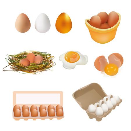 gold egg: Egg Icon Set. White, Brown, Gold Egg, Broken Egg and Fried Egg, Eggs in Box, Nest. Vector Illustration Icon. Isolated On White Background Illustration