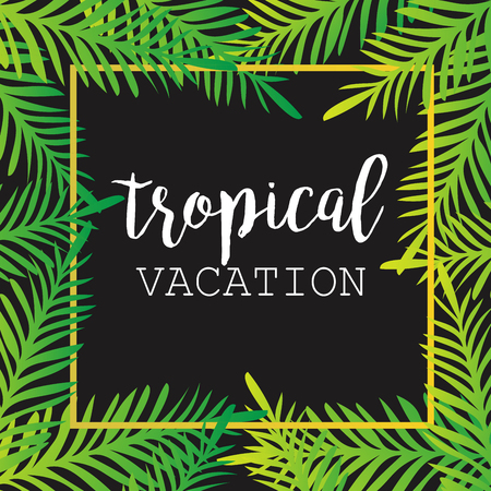 tropics: Summer tropical background of palm leaves. tropics, tropical, palm trees, tropical palm leaves. Tropical vacation. Summer Background. Square Frame. Vector Illustration.