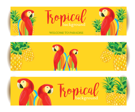 Tropical Background banner with Parrot and Pineapple. Vector backdrop illustration