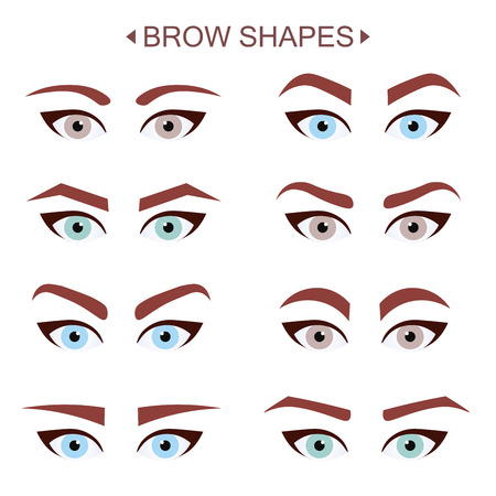 brow: Brow Shapes. Infographic Illustration