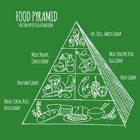 biology instruction: food pyramid