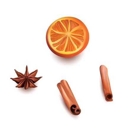 Orange Scheiben, Zimtstangen und Star Anice Vektorgrafik