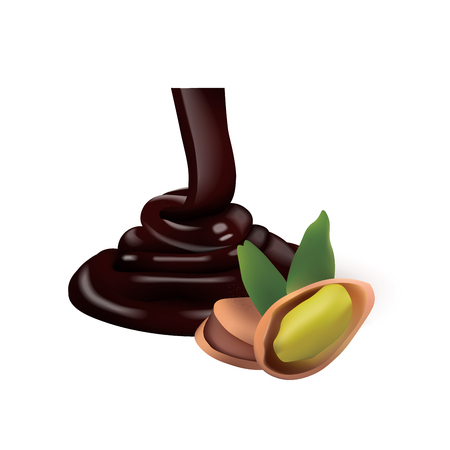 pistachio with liquid chocolate isolated vector illlustration