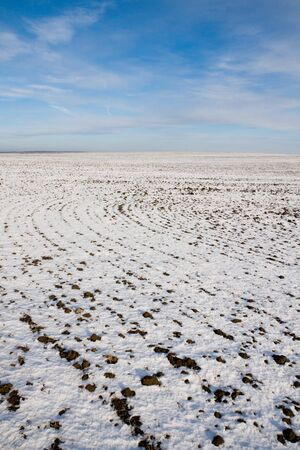 Field fully covered by snow in winter photo