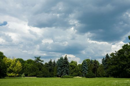 cloudy moody: Moody and cloudy sky over trees in park Stock Photo