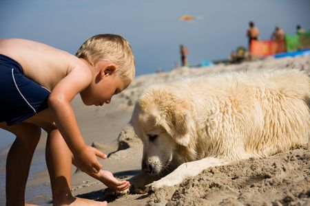 Small boy plays with a dog on a beach in summer day Stock Photo