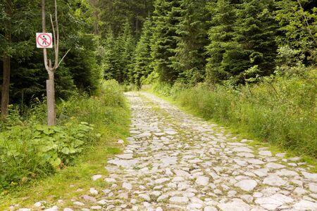 no entrance: No hay se�ales de entrada en un camino en un bosque de Foto de archivo