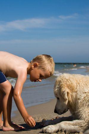 cani che giocano: Piccolo ragazzo giocando con un cane su una spiaggia in giornata estiva  Archivio Fotografico