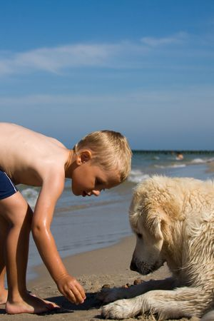 kids playing water: Small boy playing with a dog on a beach in summer day Stock Photo