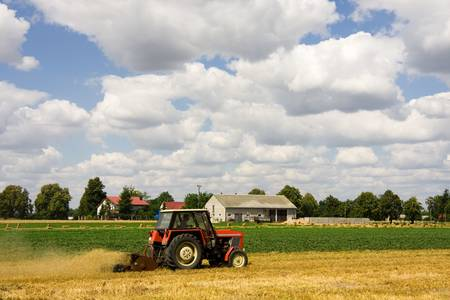 Tractor harvesting wheat field in summer day Stock Photo - 6906373