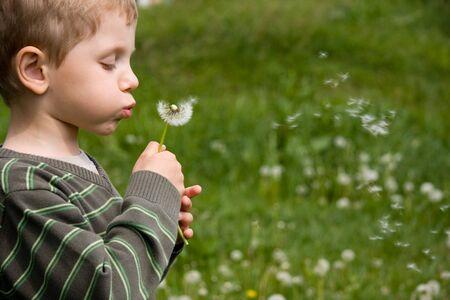 blowing dandelion: Ragazzo che soffia il dente di leone in giornata estiva sul campo di erba verde