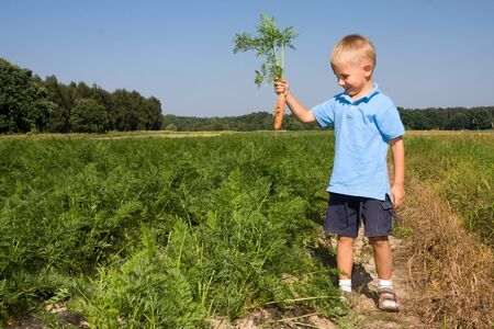 Smiling boy having fun while harvesting carrots on field photo