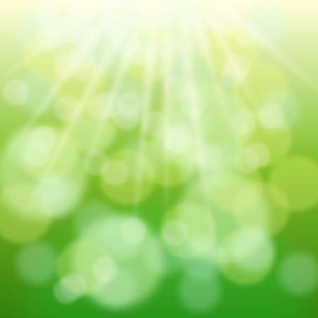 morning nature: Green bokeh and sun beams in spring day. Blurred background