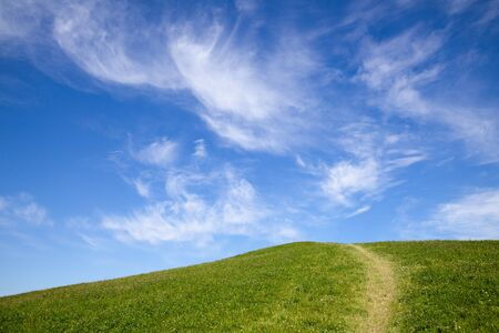 Green grass with path in spring day against blue sky photo