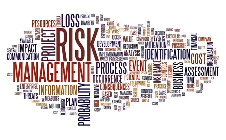 Risk management concept in tag cloud isolated on white