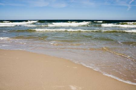 baltic sea: Tranquil beach. Coastline of baltic sea.