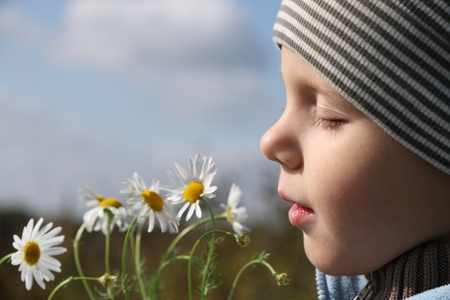 smelling: 3 years old boy smelling camomille flower outdoors  Stock Photo