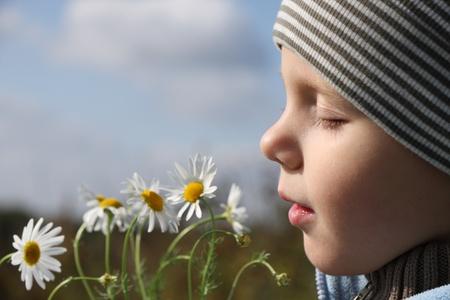 Niño de 3 años de edad con olor de flores de manzanilla al aire libre Foto de archivo
