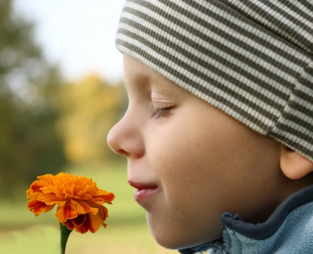 smell: 3 years old boy smelling flower in outdoors scenery. Focus on flower. Stock Photo
