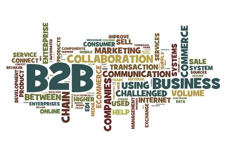 e systems: B2B - business to business concept in word tag cloud isolated on white
