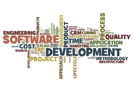 system development: Software development concept in tag cloud on white background