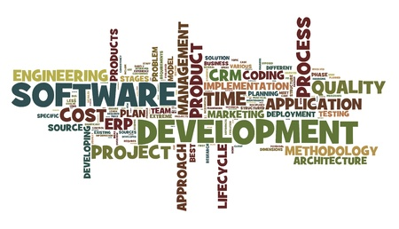Software development concept in tag cloud on white background Stock Photo - 11596135