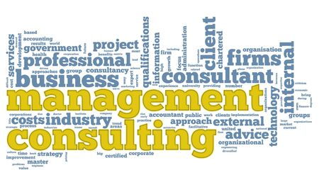 consultancy: Business consulting concept in word tag cloud on white background