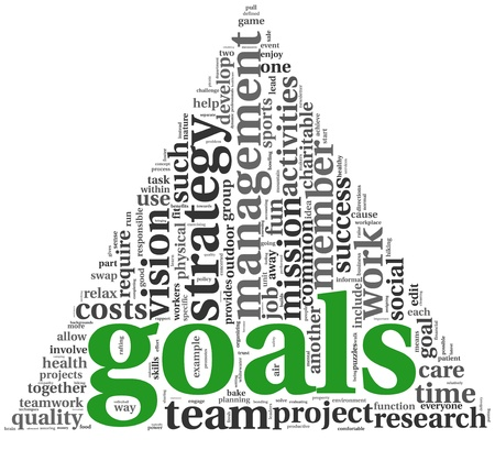 project manager: Goals in project and management concept in word tag cloud on white Stock Photo