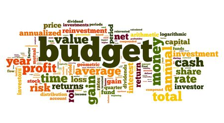 Budget concept in tag cloud on white photo