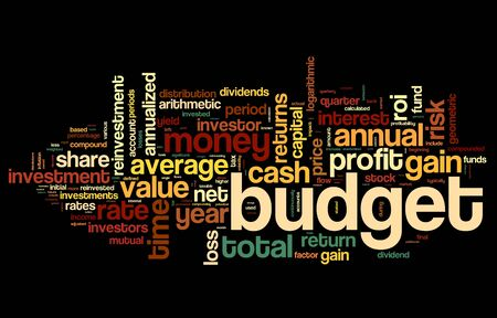 profit and loss: Budget concept in tag cloud on black