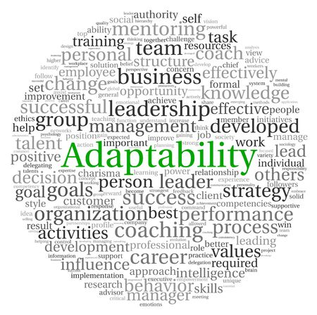 Delegation: Adaptability concept in word tag cloud on white background Stock Photo