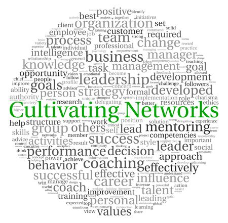 Cultivating Networks concept in word tag cloud on white background photo