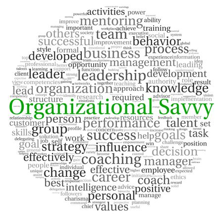 savvy: Organizational Savvy concept in word tag cloud on white background Stock Photo