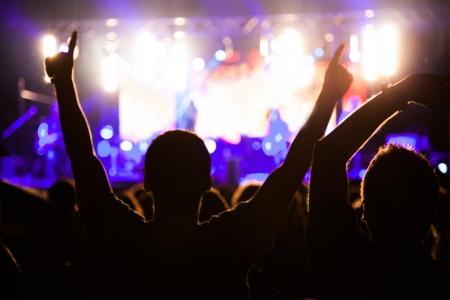concierto de rock: Multitud de aficionados animando en el concierto de la noche