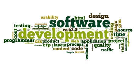 web development: Software development concept in tag cloud on white background