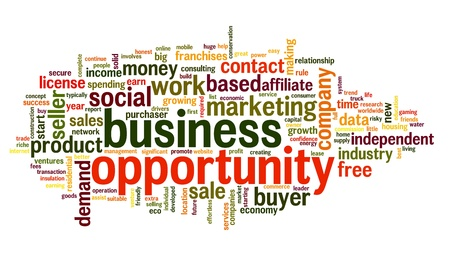 cloud tag: Business opportunity concept in word tag cloud on white background