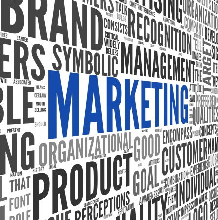 identity management: Marketing concept in word tag cloud on white Stock Photo