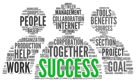 business words: Success concept related words in tag cloud isolated on white