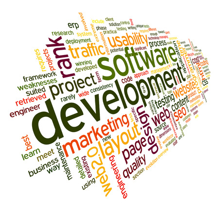 programmed: Software development concept in tag cloud on white background